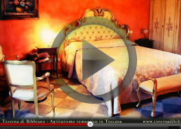 The video of <b>Taverna di Bibbiano</b>